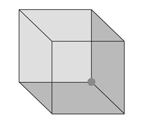 If you stare at a Necker cube, it will appear to shift its orientation.